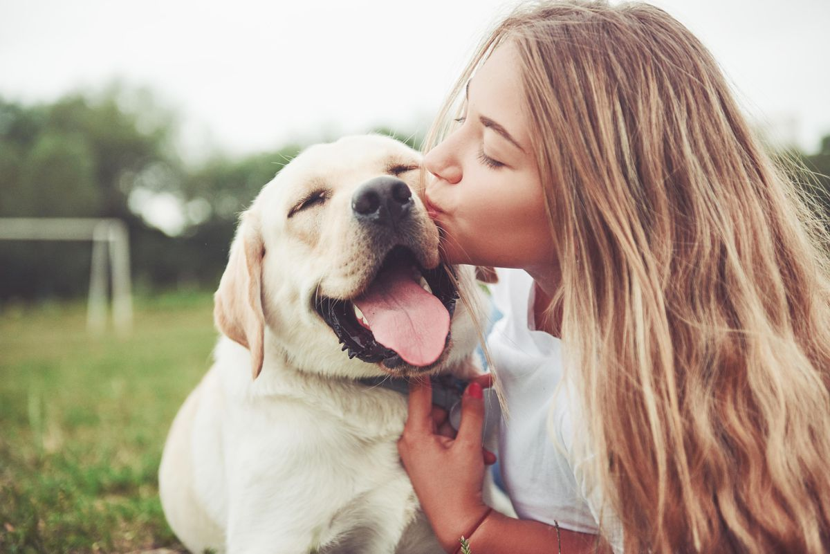 advertorial, implies CBD has improved lives of dog and owner
